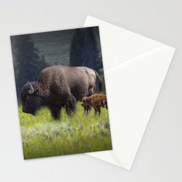 American Buffalo Bison Mother and Calf in Yellowstone National Park Stationery Cards