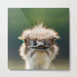 Hi, how are you? Metal Print