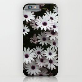 White African Daisies In A Flower Bed iPhone Case