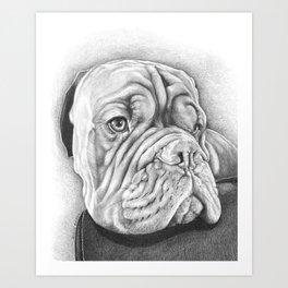 Dogue De Bordeaux Art Print