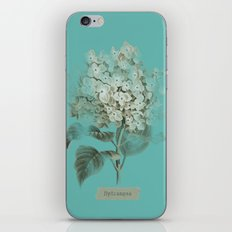 HYDRANGEA 3 iPhone & iPod Skin