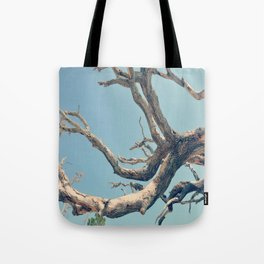 Driftwood Ladder Tote Bag