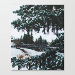 Winter Between The Branches (Color) Canvas Print