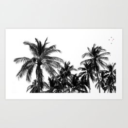 Palm Trees Los Cabos Art Print