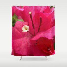 Hot pink flower 45 Shower Curtain