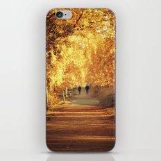 Golden walk iPhone & iPod Skin