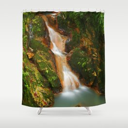 Stream in the forest Shower Curtain