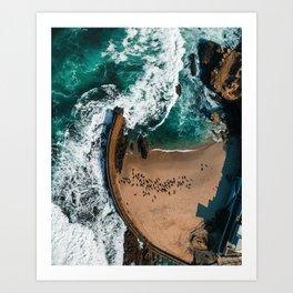 Seal Cove, Aerial Beach Photograph Art Print