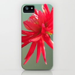 Red Imperfect Flower iPhone Case