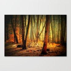 Morgenstimmung Canvas Print