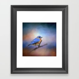 The Happiest Blue - Bluebird Framed Art Print