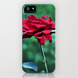 Withered Beauty (ROSE) iPhone Case