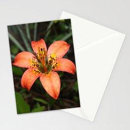 Lilium Pensylvanicum Stationery Cards