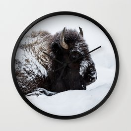 One cold bison Wall Clock