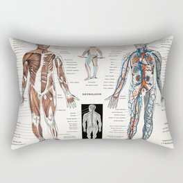 An antique  of a human nervous system and muscular system (1900) by Larousse  Auge and Claude Rectangular Pillow