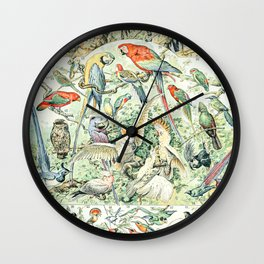 Wild Bird Diagram // Oiseaux V by Adolphe Millot XL 19th Century Science Textbook Artwork Wall Clock