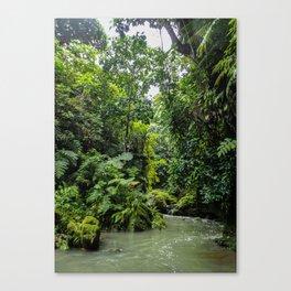 Vanuatu Canyon River Canvas Print