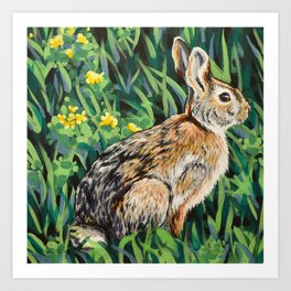 Eastern Cottontail Rabbit Art Print