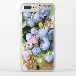 Ready to pick blueberries? Clear iPhone Case