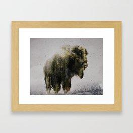 North American Bison Framed Art Print