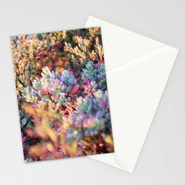 Coastal colours Stationery Cards
