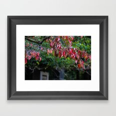 Sad Leaves Framed Art Print