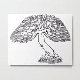 California Oak Metal Print