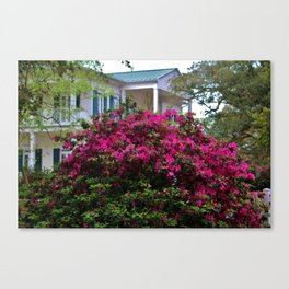 Beautiful Living In The South Canvas Print
