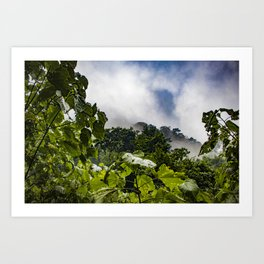 View through the Mist of the Cloud Forest in the Chocoyero-El Brujo Nature Reserve, Nicaragua Art Print