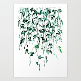 Ivy on the Wall Art Print
