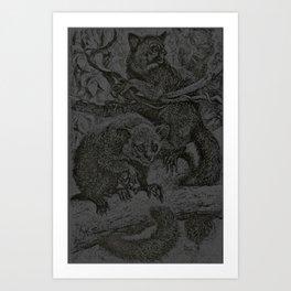Aye-Aye Art Print