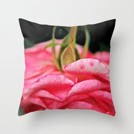 Fallen Pink Rose flower Throw Pillow