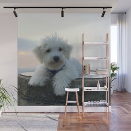 Teddy At Sunset Wall Mural