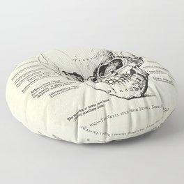 Vintage Anatomy Skull  Floor Pillow