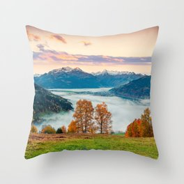 Beautiful Nature Concept Background Throw Pillow