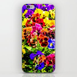 Viola Tricolor Pansy Flowers iPhone Skin