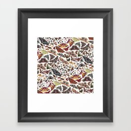 Moths of North America Pattern Framed Art Print