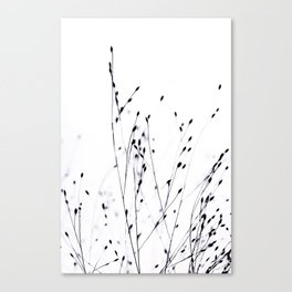 BLACK GRASS Canvas Print