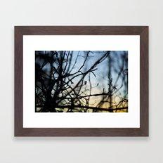 Winter Sunset in the Woods Framed Art Print