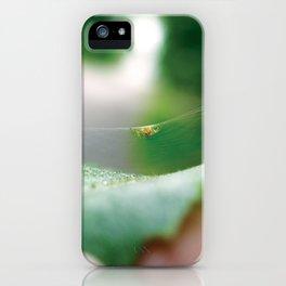 Leaf Spider iPhone Case