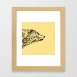 Curious bear Framed Art Print
