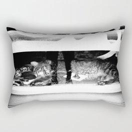 WINDOW KATZ Rectangular Pillow