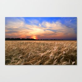 Sunset Harvest Canvas Print