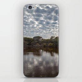 Brown Lake iPhone Skin