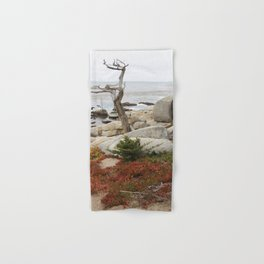 Dead Cypress At Pebble Beach Hand & Bath Towel