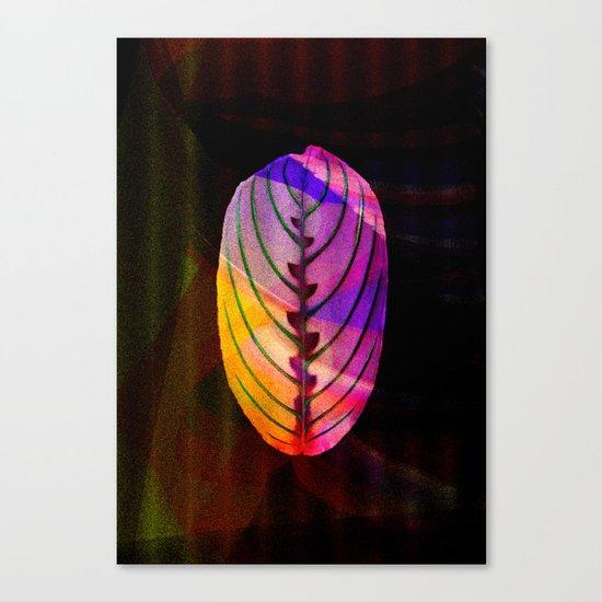 leaf (BLATT) Canvas Print