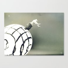 Stuck In a Hard Place |Photo Canvas Print