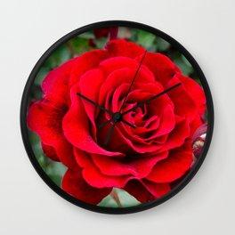 Rose revolution Wall Clock