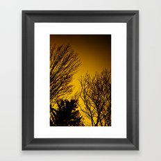 Fall Sunset Trees Framed Art Print