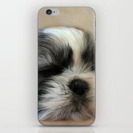 Puppy Love iPhone Skin